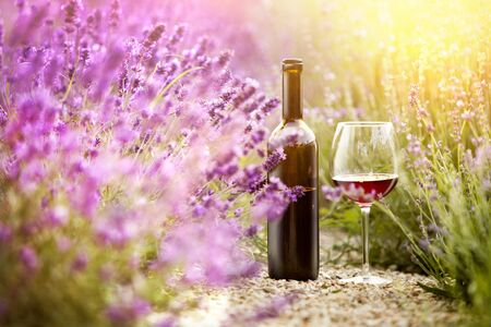 Delicious wine over lavender flowers field. Stok Fotoğraf