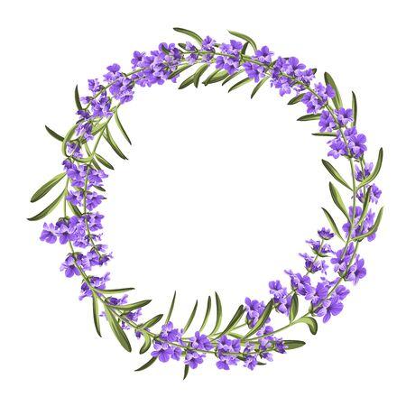 L'elegante carta lavanda con cornice di fiori. Corona di lavanda per la presentazione del testo. Etichetta con fiori viola. Illustrazione vettoriale.