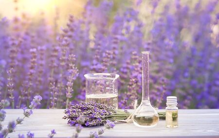 Essential lavender oil in the bottle with dropper on the gray wooden desk. Horizontal close-up. Stock Photo
