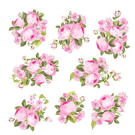 Vintage flowers set over white background. Wedding rose flowers bundle. Flower collection of watercolor detailed hand drawn roses. Vector set of blooming flowers for your design. Vector illustration. Ilustración de vector