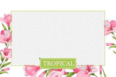 Cover design, transparent product package window, and alstroemeria flower border. Regenerate cream label design with pink lily bloomings. Template of beauty skincare design over the tropical border.