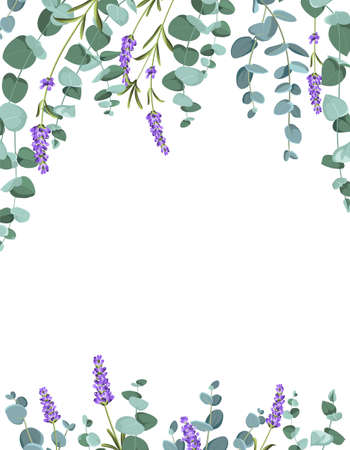 Eucaliptus and lavender elements design template. Simple design with frame flowers. Herbal vector frame.