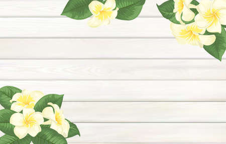 Tropical template for your design. Plumeria leaves on wooden background with empty space