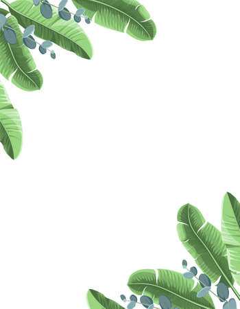 Tropical background with banana leaves and eucalyptus. Vector illustration