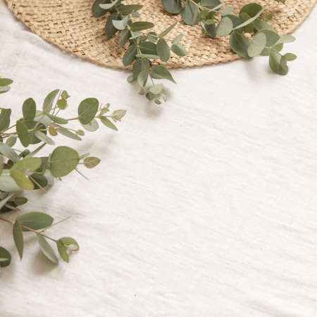 Natural materials style with leaves of eucalyptus on a light fabric background.