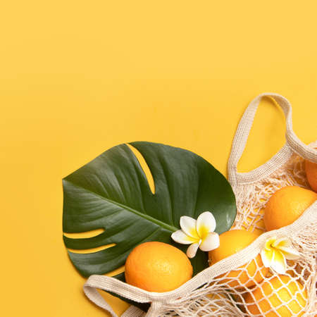 Fresh oranges and brushes in a eco bag. Cutted citrus fruit for natural cosmetics.