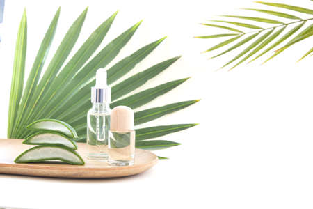 Aloe Vera leaf slice with essential oil.