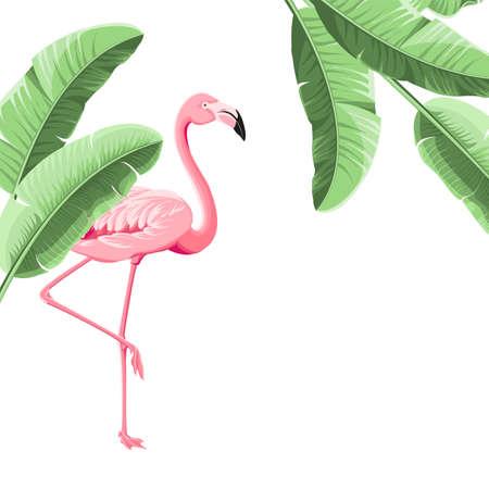 Summer tropical frame exotic banana leaf. Design background for card,invitation,poster. Illustration