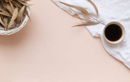 Eucalyptus leaves and a cup of black coffee on a light background with empty space. Banque d'images