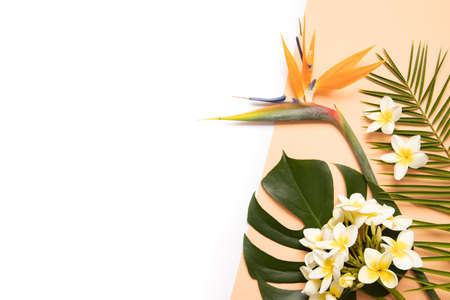 Tropical background with palm monstera leaves and flower . 版權商用圖片 - 157334164