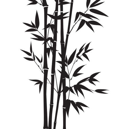 Silhouette bamboo leaves on white background.