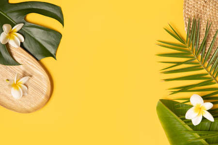 Tropical background with palm monstera leaves on yellow.