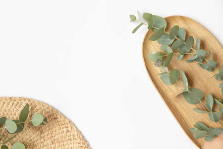Green leaves of eucalyptus branches on a wooden plate. 免版税图像