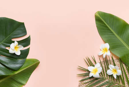 Tropical background with palm leaves and flower.