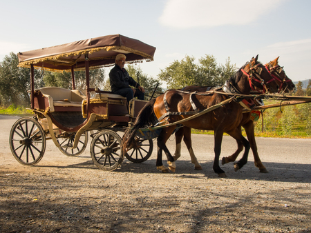 Classic turkish horse carriage Stock Photo