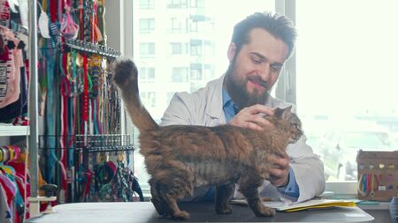 Cheerful male vet doctor petting cute cat at his clinic. Bearded veterinarian smiling, playing with adorable kitty after medical checkup. Profession, medical worker concept