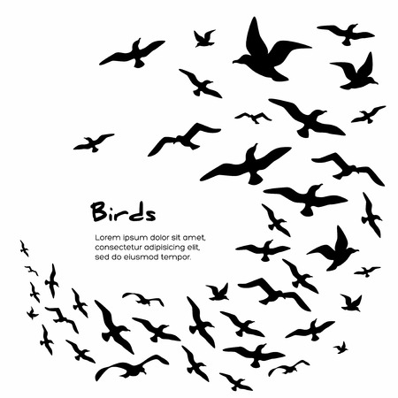 bandada pajaros: Siluetas de los pájaros que vuelan negros. Ilustración del vector.