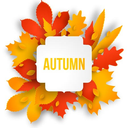 Autumn colotful background with leaves. Back to school. Vector illustration.