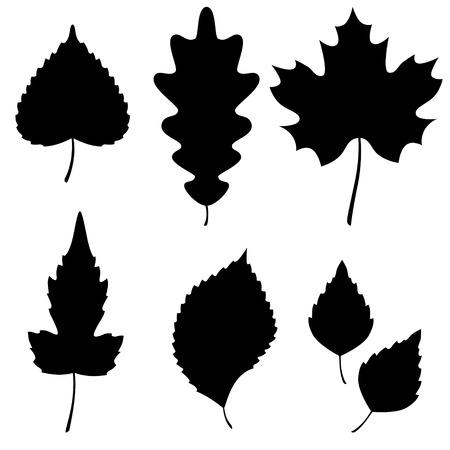 葉のシルエットのベクター コレクション。ベクトル イラスト。