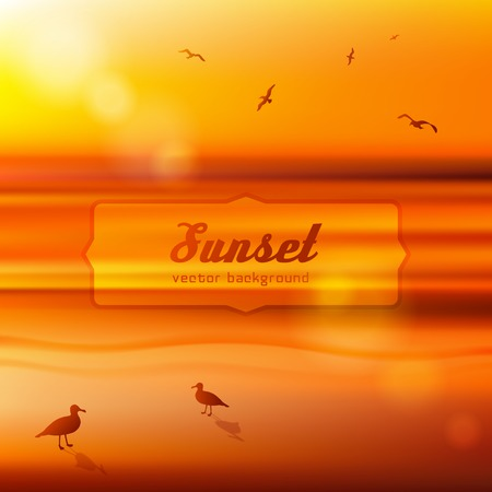 Seagulls at sunset. Background illustration. Vector blured backdrop  Vector