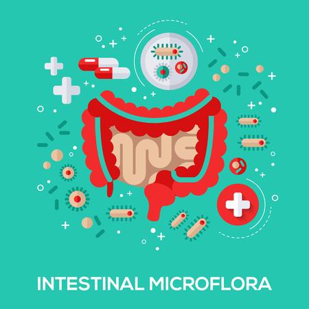 Darmflora flache Ikonen Konzept. Vektor-Illustration. Darms und Bakterium, Pillen und Tablette für die richtige Verdauung. Vektorgrafik