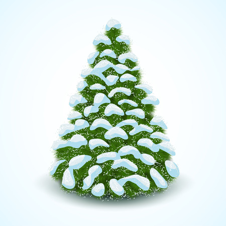 wintery: Forest Spruce in Snow Isolated on White Background. Vector illustration.