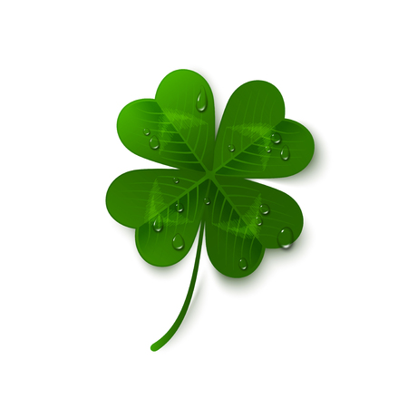 Saint Patricks Day four leaf clover with dew drops isolated on white background. Holiday 3d icon. Vector illustration. Lucky and success symbol.