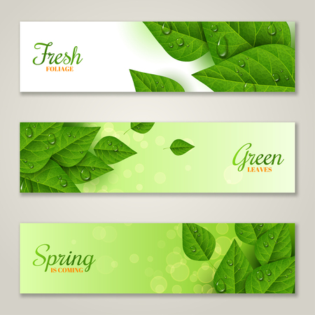 dewy: Horizontal banners with green leaves
