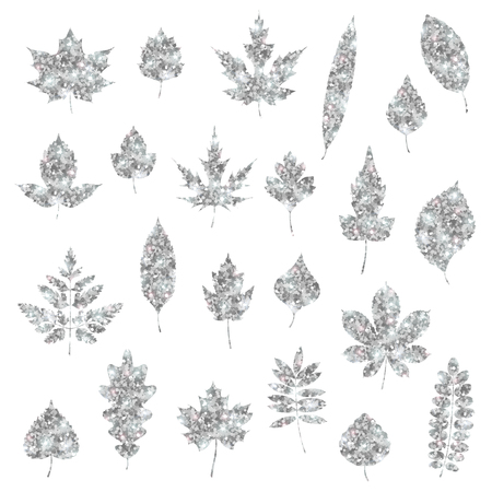 Set of silver various forest leaves isolated on white. Vector Illustration. Silver foil confetti. Natural glitter design decorations