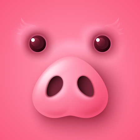 Pig face for Chinese New Year Illustration