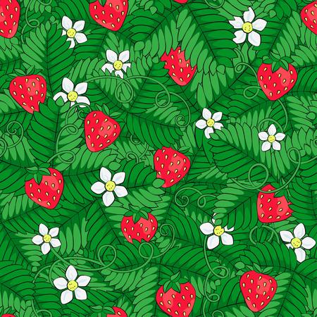 Field of strawberry. 向量圖像