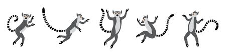 Cute funny ring-tailed lemurs jumps. Exotic Lemur catta. Set of vector illustrations in cartoon and flat style isolated on white background Illustration