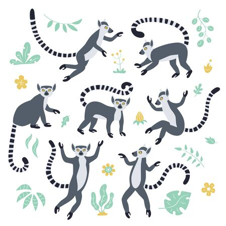 Cute funny ring-tailed lemurs and tropical plants. Exotic Lemur catta. Set of vector illustrations in cartoon and flat style isolated on white background