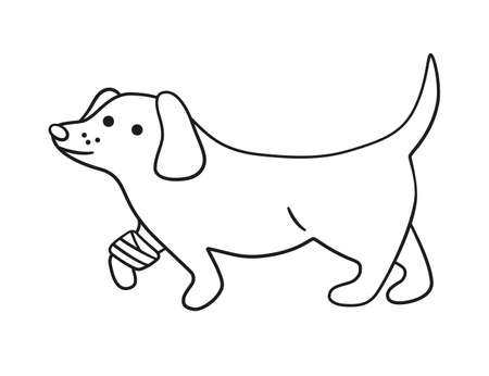 A sick dog with a wounded paw in bandages in doodle style. Unhealthy puppy with splinting leg. Hand drawn vector illustration