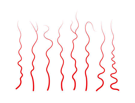 Set of human veins and arteries. Red blood vessels and capillaries. Vector illustration isolated on white background.
