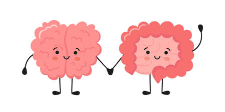 Kawaii happy human brain and funny intestine characters. Hand drawn symbol of the communication between the intestines and the brain. Vector cartoon illustration isolated on white background.