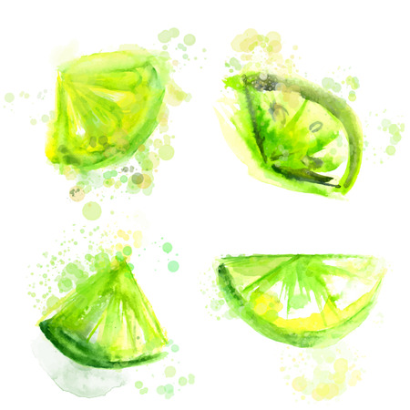 lime: Four slices of green limes.