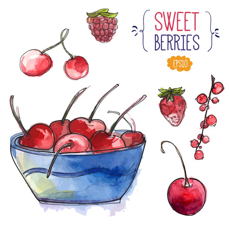 Bowl with cherries and isolated berries. Watercolor vector illustration Vector