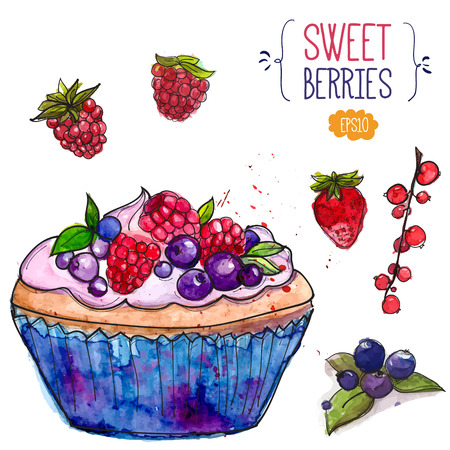 rasberry: Tartlet decorated with berries and isolated strawberry, rasberry, red currant. Watercolor illustration Illustration
