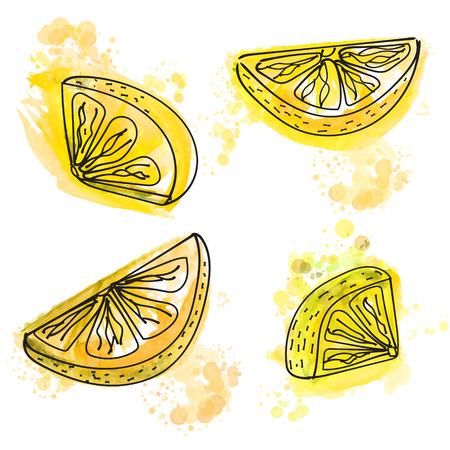 Handgemalte Zitronenscheiben mit saftigen gelben Farbspritzern. Vektor-Illustration.