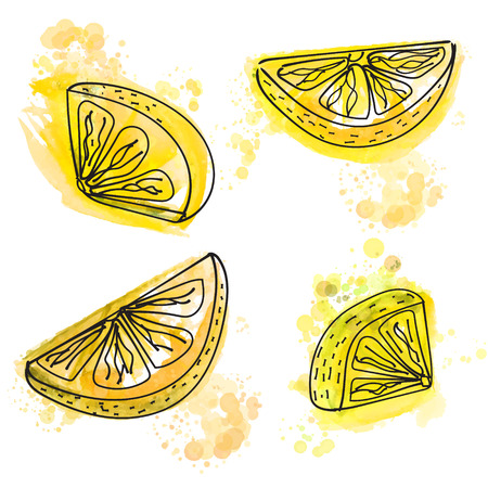 wedges: Hand painted slices of lemon with juicy yellow paint splashes. Vector illustration.