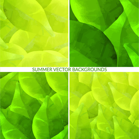 swashes: Set of green leaves backgrounds with foliage. Nature vector textures.