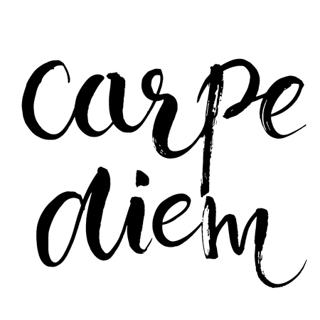 word art: Carpe diem - latin phrase means Capture the moment. Inspirational quote expressive handwritten with brush, isolated on white background. Vector calligraphy art.