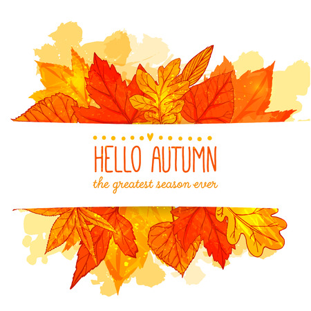 leaf: Hello autumn banner with orange and red hand drawn leaves. Vector fall background with golden leaf.