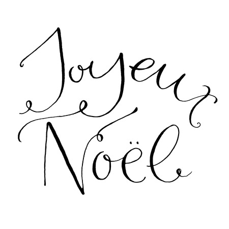 a word: Joyeux Noel - french phrase means Merry Christmas. Whimsical calligraphy