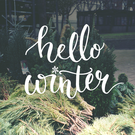 december: Hello winter typography overlay on photo of european Christmas tree market.