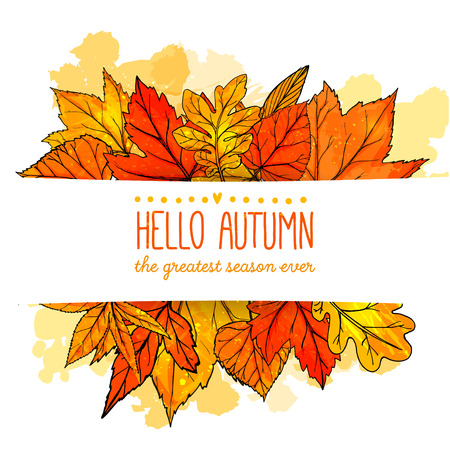 Hello autumn banner with orange and red hand drawn leaves. Vector fall background with golden leaf.