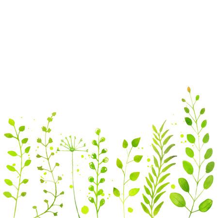 손으로 그린 수채화 녹색 식물, 나뭇 가지와 꽃과 흰 봄 배경입니다. 계절 판매, 프로모션, 공지 사항 등의 벡터 배경 일러스트