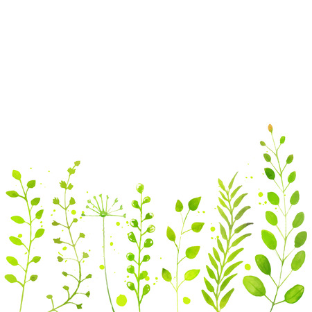 White spring background with hand painted watercolor green plants, twigs and flowers. Vector backdrop for seasonal sales, promo, announcements, etc. Çizim