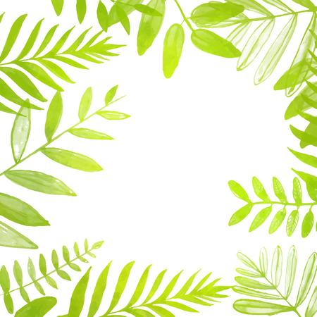 hojas parra: Marco cuadrado de la primavera y el verano con brillantes hojas verdes tropicales. Vector ilustración de la acuarela. Telón de fondo para las ventas de temporada, promoción, anuncios, etc.